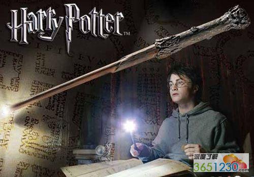 哈利/哈利的魔杖